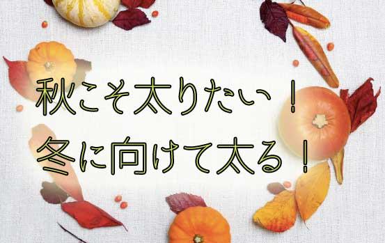 秋は冬に向けて太りたい!